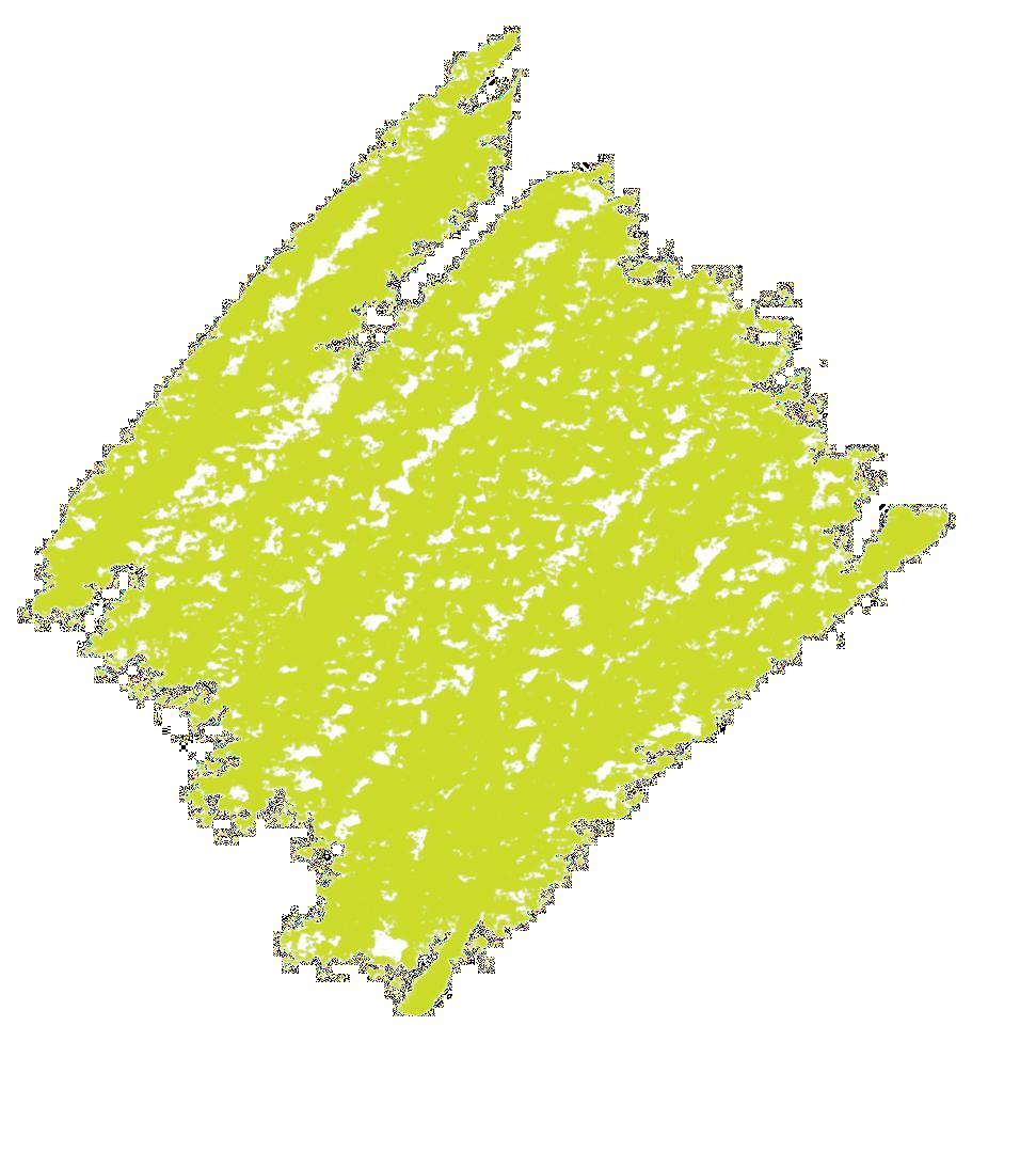 Crayonné vert fond transparent
